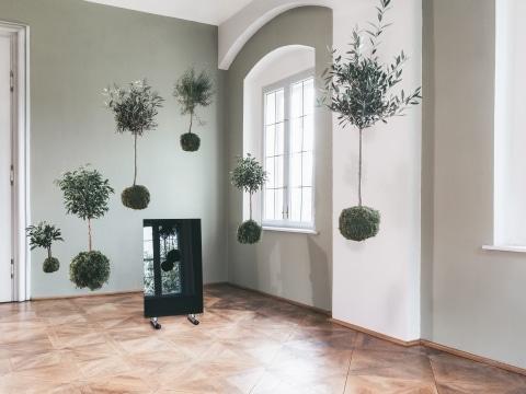 Schwarze Glasheizung mit Standfüßen von Redwell in einem Raum in einem Schloss mit fliegenden, grünen Bäumen.