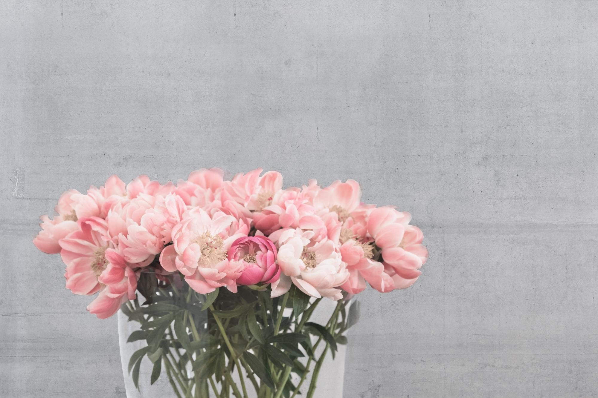Zarte rosa Blümchen in einer Vase vor einer Betonwand.
